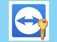 пароль в Teamviewer